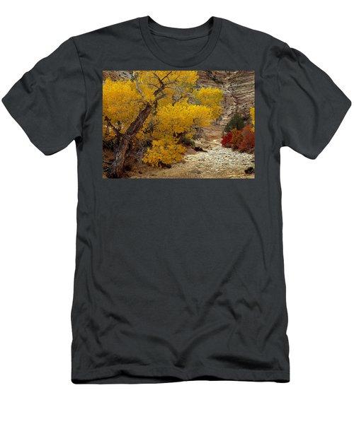 Zion National Park Autumn Men's T-Shirt (Athletic Fit)