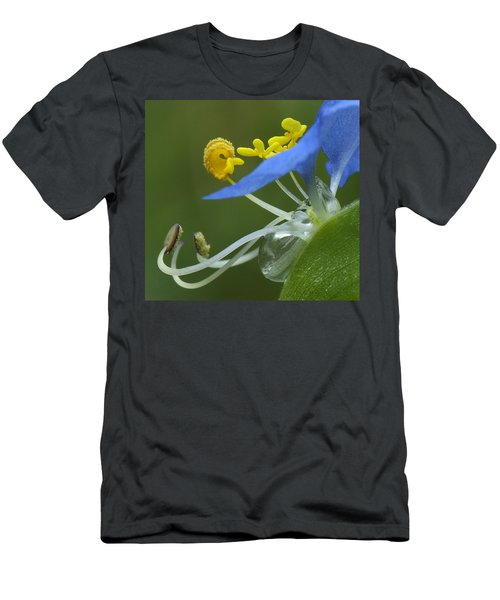 Close View Of Slender Dayflower Flower With Dew Men's T-Shirt (Athletic Fit)