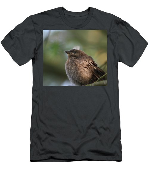 Baby Bird Men's T-Shirt (Athletic Fit)