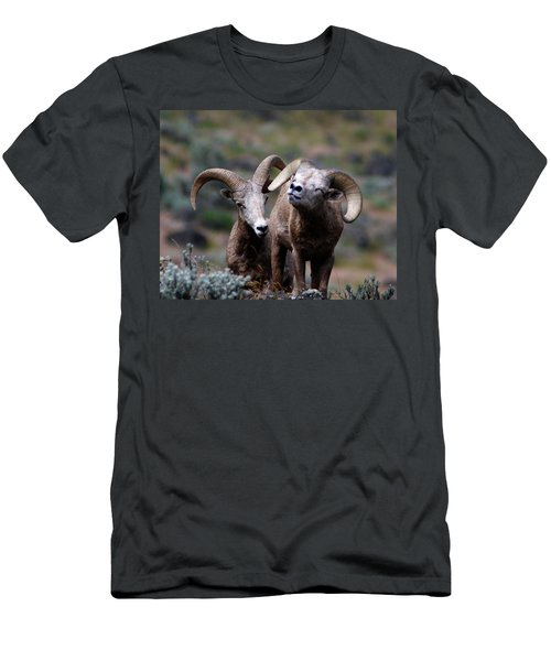 Men's T-Shirt (Slim Fit) featuring the photograph Smile by Steve McKinzie