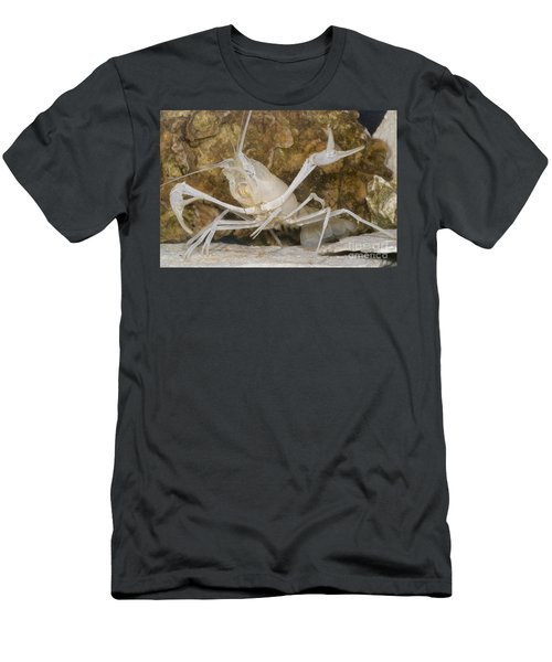 Florida Cave Crayfish Men's T-Shirt (Athletic Fit)