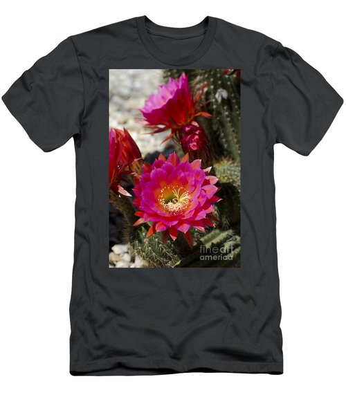 Pink Cactus Flowers Men's T-Shirt (Athletic Fit)