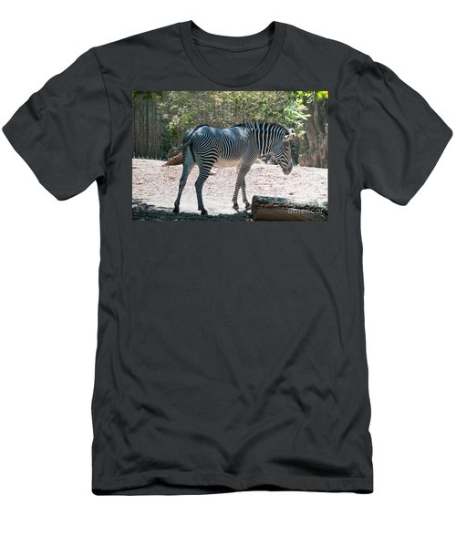 Lincoln Park Zoo In Chicago Men's T-Shirt (Slim Fit) by Carol Ailles