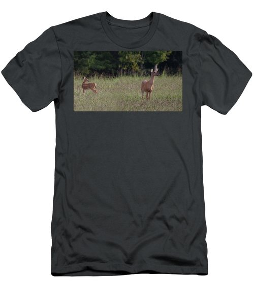 Alert Doe And Fawn Men's T-Shirt (Athletic Fit)
