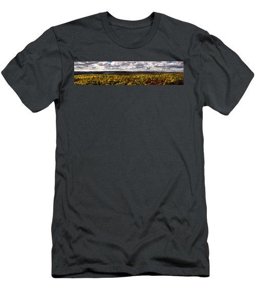 Algonquin Park Panorama Men's T-Shirt (Athletic Fit)