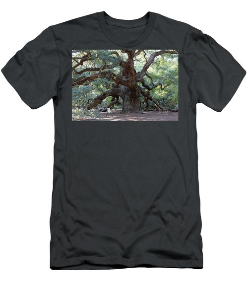 Angel Oak - Dont Climb Or Carve On The Tree Men's T-Shirt (Athletic Fit)