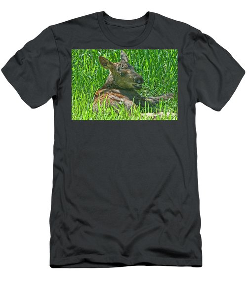 Baby Moose Men's T-Shirt (Athletic Fit)