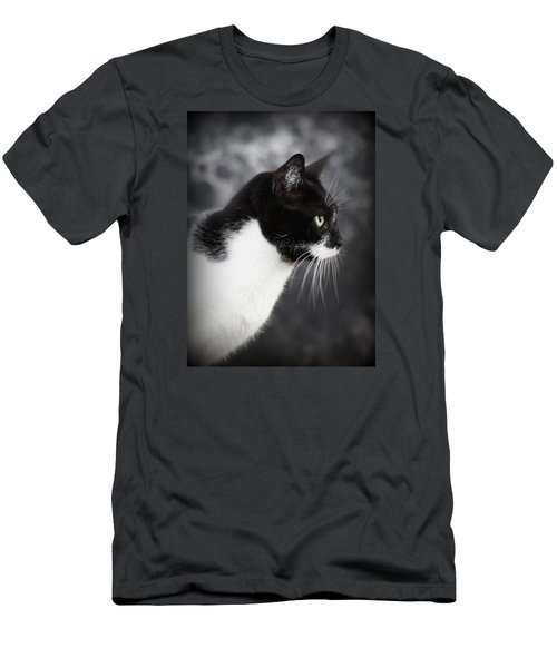 Beautiful Kitty Men's T-Shirt (Slim Fit) by Paul  Wilford