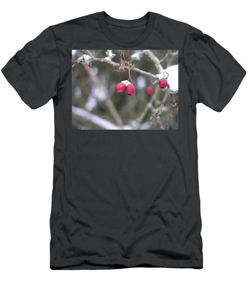 Men's T-Shirt (Slim Fit) featuring the painting Berries In Winter by Rand Swift