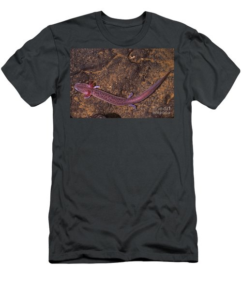 Big Mouth Cave Salamander Men's T-Shirt (Athletic Fit)