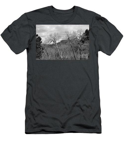 Black And White Aspen Men's T-Shirt (Athletic Fit)