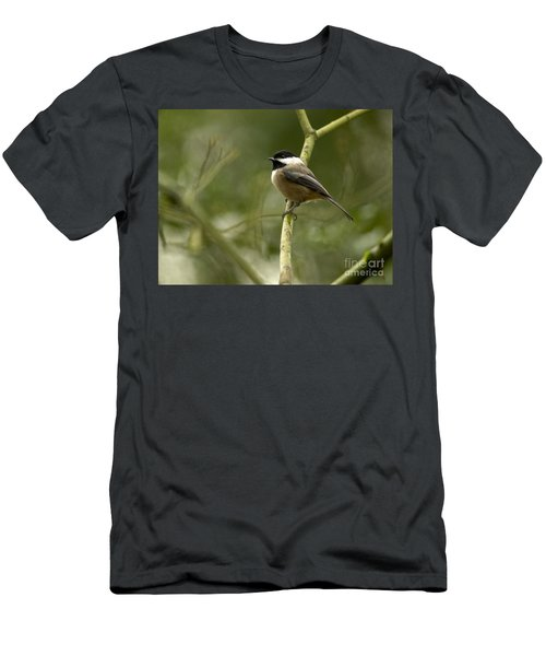 Black-capped Chickadee With Branch Bokeh Men's T-Shirt (Athletic Fit)