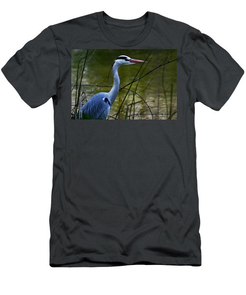 Blue Heron Vondelpark Amsterdam Men's T-Shirt (Athletic Fit)