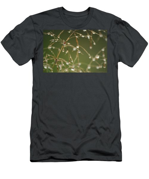 Branches Of Dew Men's T-Shirt (Athletic Fit)