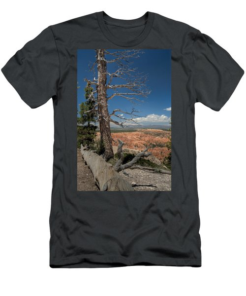Bryce Canyon - Dead Tree Men's T-Shirt (Slim Fit) by Larry Carr