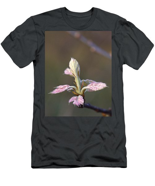 Budding Oak Leaves Men's T-Shirt (Athletic Fit)