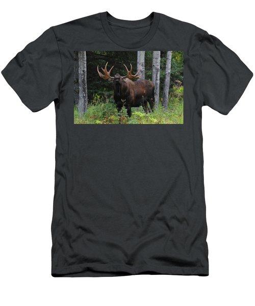 Bull Moose Flehmen Men's T-Shirt (Athletic Fit)