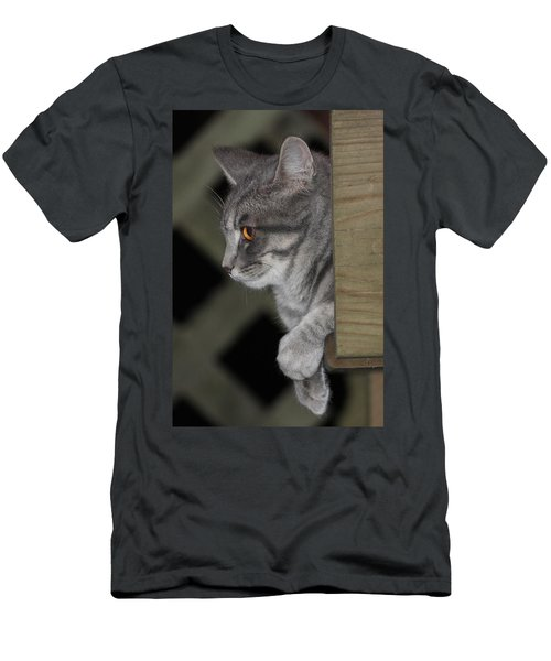 Cat On Steps Men's T-Shirt (Athletic Fit)