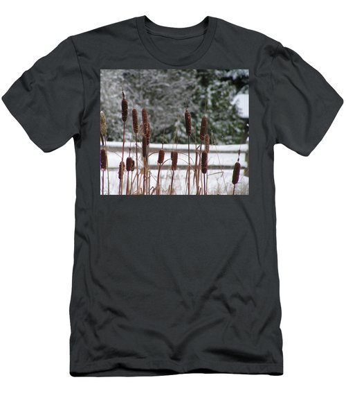 Men's T-Shirt (Slim Fit) featuring the photograph Cattails In Winter by Rand Swift