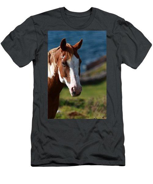 Chestnut Mare  Men's T-Shirt (Athletic Fit)