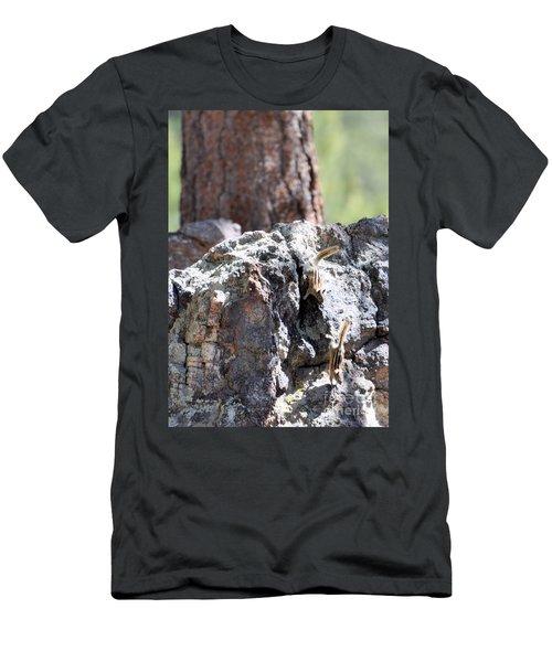 Chip N' Dale Men's T-Shirt (Athletic Fit)