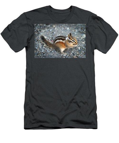 Chipmunk Men's T-Shirt (Athletic Fit)