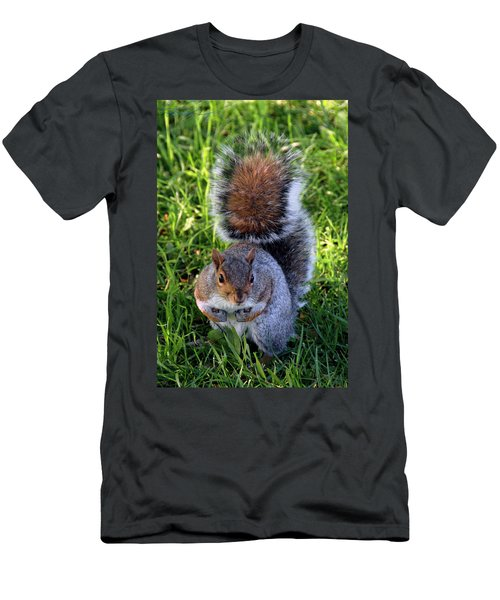 City Squirrel Men's T-Shirt (Athletic Fit)