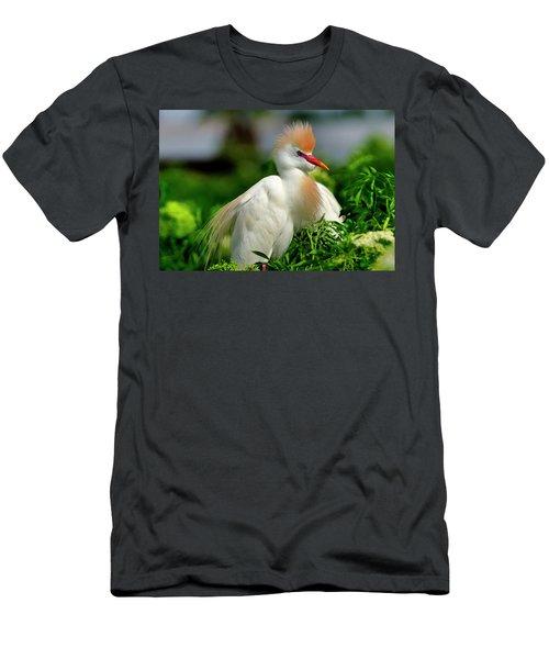 Colorful Cattle Egret Men's T-Shirt (Athletic Fit)