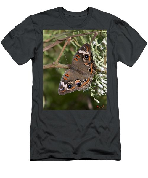 Common Buckeye Butterfly Din182 Men's T-Shirt (Athletic Fit)