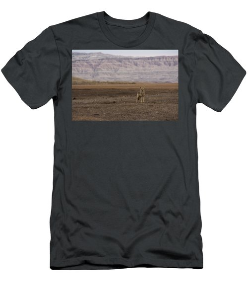 Coyote Badlands National Park Men's T-Shirt (Athletic Fit)