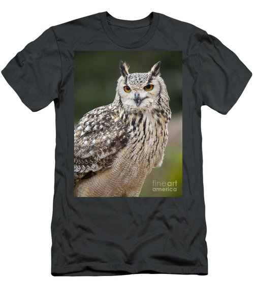 Eagle Owl II Men's T-Shirt (Slim Fit) by Chris Dutton