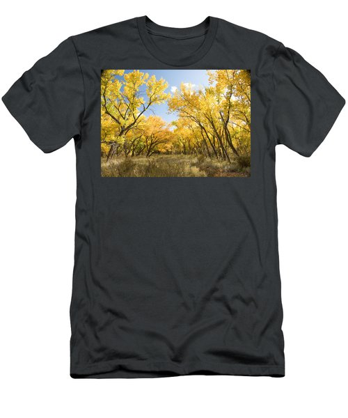 Fall Leaves In New Mexico Men's T-Shirt (Athletic Fit)