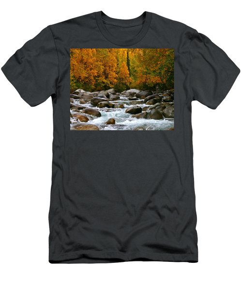 Fall On The Little Susitna River Men's T-Shirt (Athletic Fit)