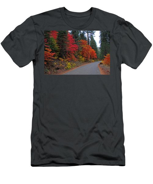 Fall's Splendor Men's T-Shirt (Slim Fit) by Lynn Bauer