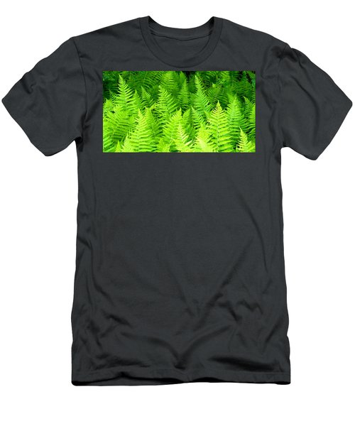 Ferns Galore Filtered Men's T-Shirt (Athletic Fit)