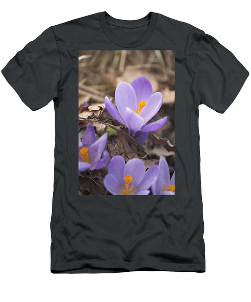 First Crocus Blooms Men's T-Shirt (Athletic Fit)