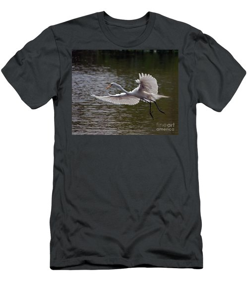 Great Egret In Flight Men's T-Shirt (Athletic Fit)