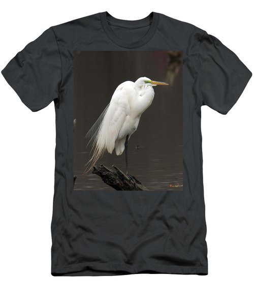 Men's T-Shirt (Slim Fit) featuring the photograph Great Egret Resting Dmsb0036 by Gerry Gantt