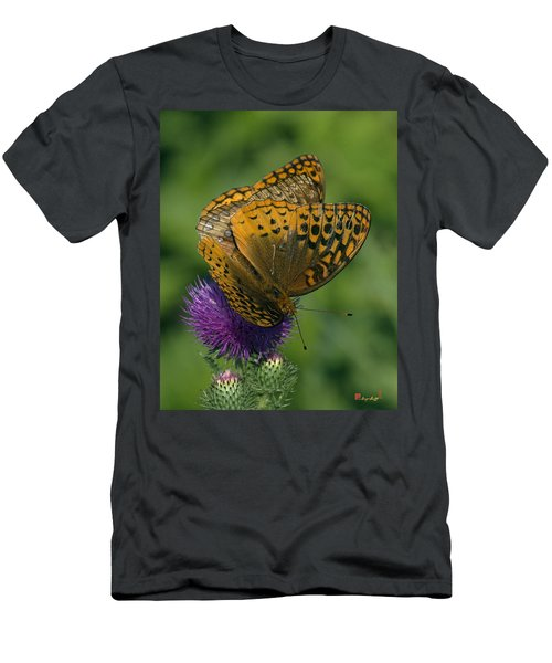 Great Spangled Fritillaries On Thistle Din108 Men's T-Shirt (Athletic Fit)