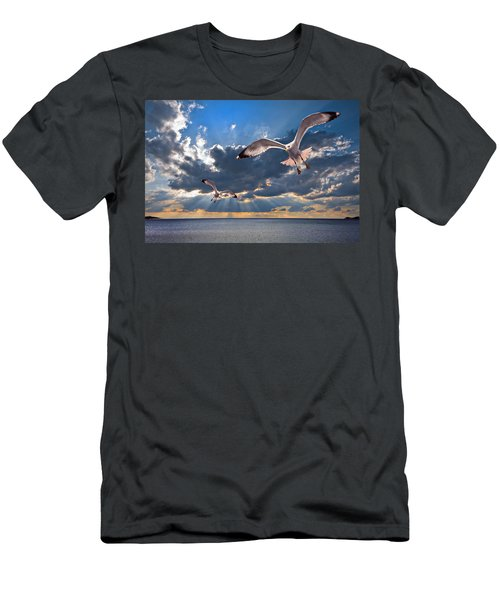 Greek Gulls With Sunbeams Men's T-Shirt (Athletic Fit)
