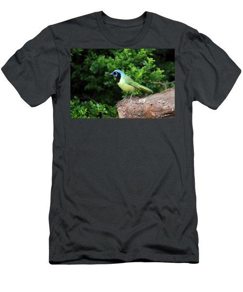 Green Jay Men's T-Shirt (Athletic Fit)