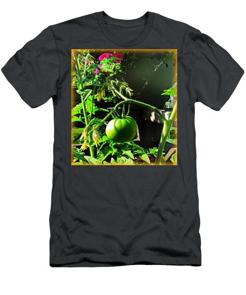 Green Tomatoes Men's T-Shirt (Athletic Fit)