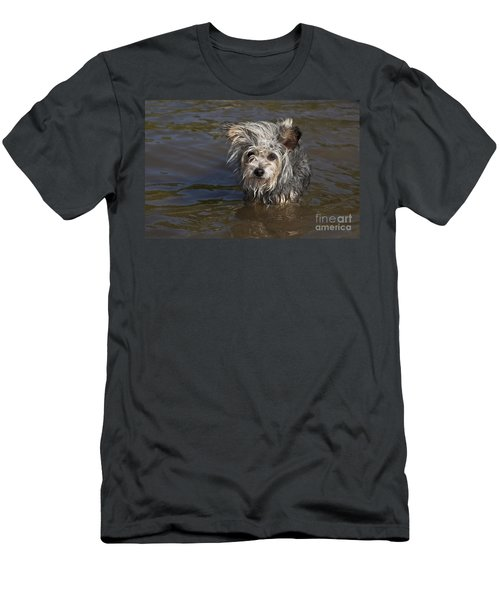 Gremlin Men's T-Shirt (Slim Fit) by Jeannette Hunt