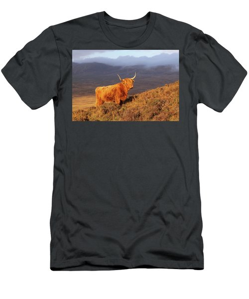 Highland Cattle Landscape Men's T-Shirt (Athletic Fit)