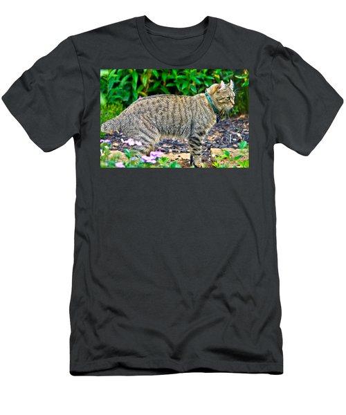 Highland Lynx Cat In Garden Men's T-Shirt (Athletic Fit)