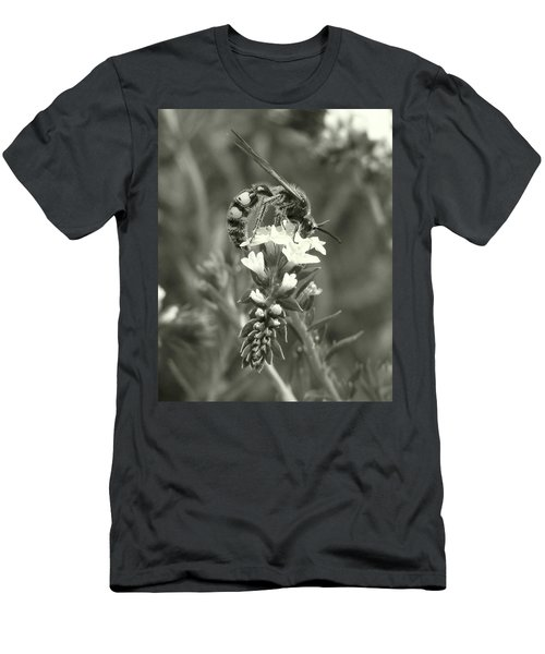 Hunter Wasp On Heliotrope Men's T-Shirt (Athletic Fit)