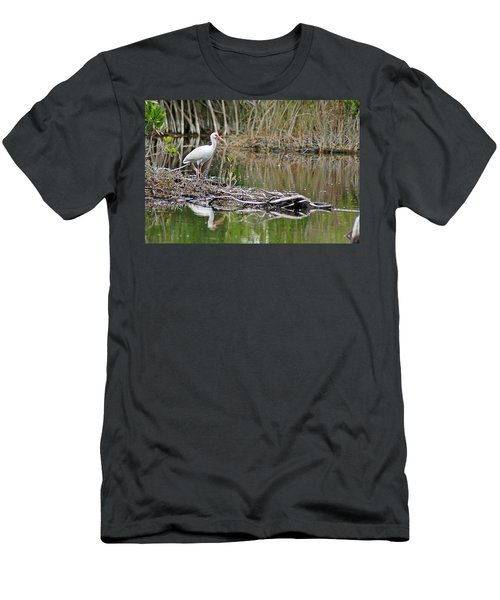 Ibis 2 Men's T-Shirt (Athletic Fit)
