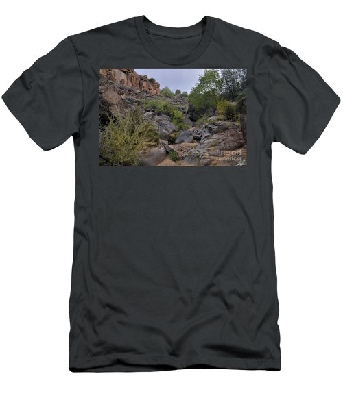 Men's T-Shirt (Athletic Fit) featuring the photograph In The Arroyo   by Ron Cline