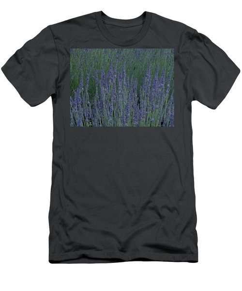 Just Lavender Men's T-Shirt (Slim Fit) by Manuela Constantin