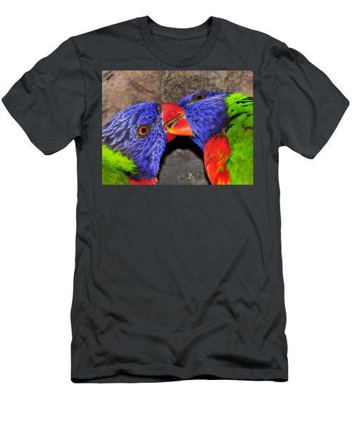 Kissing Lorikeets Men's T-Shirt (Athletic Fit)